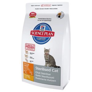 ranking suchych karm dla kota