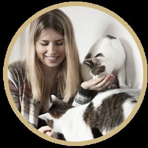Blog o kotach - Kicikot